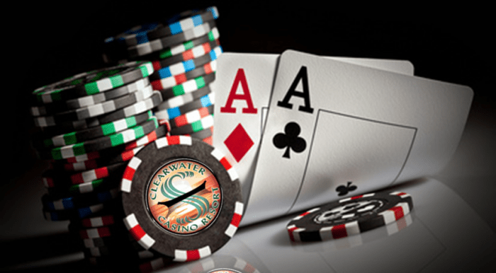 Software programs To Energy Up Your Casino
